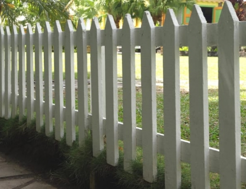 Time To Paint Your Fence